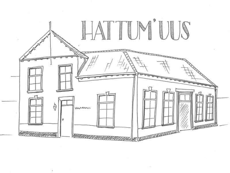 hattumuus4