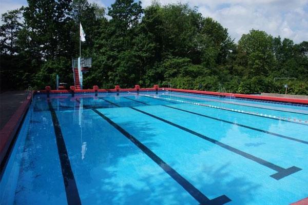 Zwemloop Stelleplas